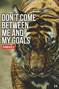 Don't Come Between Me And My Goals  http://www.gymaholic.co/  #fit #fitness #fitblr #fitspo #motivation #gym #gymaholic #workouts #nutrition #supplements #muscles #healthy