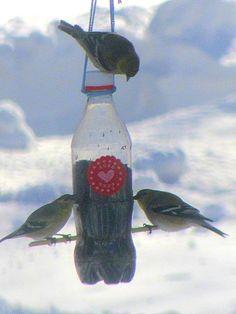 Homemade Soda Bottle Thistle Feeder  #finches at feeder
