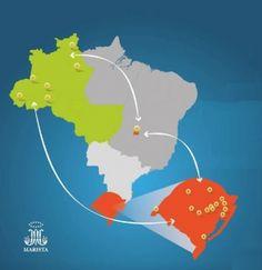 Brasil: União da Província do Rio Grande do Sul com o Distrito da Amazônia