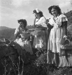Strawberry Festival in Italy - Nemi 1949   #TuscanyAgriturismoGiratola