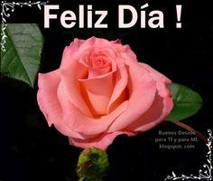 Buenos Deseos para TI y para MÍ: * Feliz Día ! ...(rosa rosa)