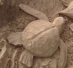 The Sand Sculpture Trail of South Padre Island