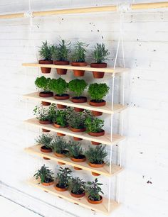 This hanging planter is made up of five wooden planks with openings that let pots dangle. The planks are spaced evenly between two pieces of rope and are secured with zip ties for a uniform look. Get the tutorial at Survival Life.   - CountryLiving.com