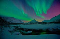 aurora borealis island - Google pretraživanje
