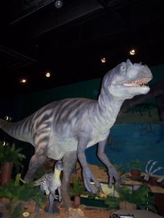 Alice the Allosaurus in Discover World at the McKinley Presidential Library & Museum