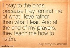 Terry Tempest Williams Quotes | Terry Tempest Williams quotes and sayings