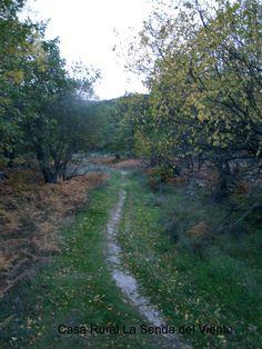 Caminos hacia el otoño en Bustarviejo