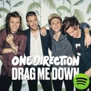 Drag Me Down, a song by One Direction on Spotify