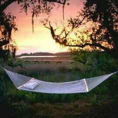 pawleys island south carolina      beaches for miles very pretty   another amazing place i called home   pinterest   pawleys island south carolina     pawleys island south carolina      beaches for miles very pretty      rh   pinterest