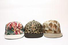 DECHO: CAP
