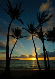 Enjoy gorgeous sunsets in Lahaina on Maui. Permanent Vacation, Hawaii Honeymoon, Blue Hawaii, Beautiful Sunrise, Nature Scenes, Dream Vacations, Beautiful Places, Beautiful Pictures, The Great Outdoors