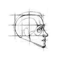 Как правильно рисовать портрет, учимся рисовать портрет человека профиль, рисуем голову