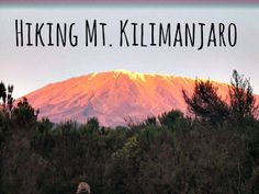 Image result for the snows of kilimanjaro quotes Vintage National Park Posters, Kilimanjaro, Mount Rainier, National Parks, Hiking, Nature, Quotes, Image, Travel