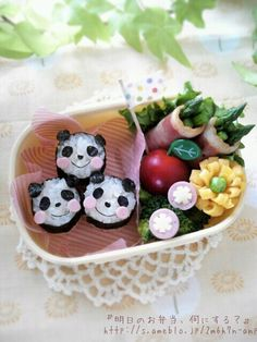 panda bento (japanese style lunchbox or packed meal common in cuisines)