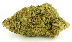 #SHISKABERRY #Marijuana #Strain #Reviews #Pictures #w33daddict