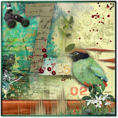 """Bird Watcher"" by necyluv ❤ liked on Polyvore"