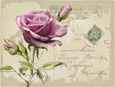 Find Vintage Postcard Beautiful Rose Handdrawing stock images in HD and millions of other royalty-free stock photos, illustrations and vectors in the Shutterstock collection. Thousands of new, high-quality pictures added every day. Postcard Display, Postcard Wall, Flores Vintage Vector, Vintage Postcards, Vintage Images, New Years Eve Images, Postcard Wedding Invitation, Vintage Rosen, Happy Valentines Day Images