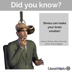 #Stress can shrink your brain! #brainscience #funfacts #mentalhealth