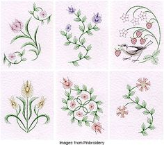 free embroidery pattern Embroidery Designs, Embroidery Cards, Embroidery Flowers Pattern, Embroidery Transfers, Embroidery Patterns Free, Card Patterns, Embroidery Kits, Ribbon Embroidery, Embroidery Stitches