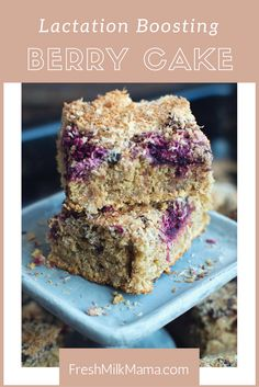 This lactation recipe for a delicious and healthy berry cake is easy to follow and will support any nursing mom to boost her milk supply.
