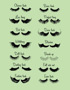 eyelash styles. I like the classic lash best.