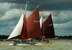Pin Mill Smack race, River Orwell. Gill Moon Photography and Journalism - Gallery