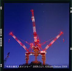 Tower Crane  20090321夜明01.jpg