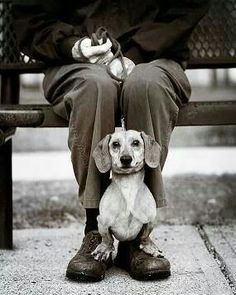 Just two older gentlemen . . . waiting for the bus <3