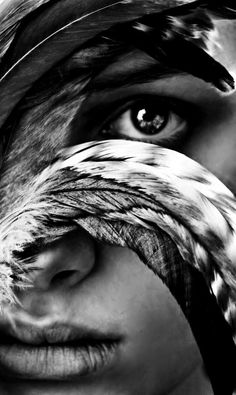 another photo where the eye tells so much about her beauty and the beauty in the photo. the detail in the feather has so much depth, i love this photo as a close up but wouldnt think it would be as strong if it showed more.