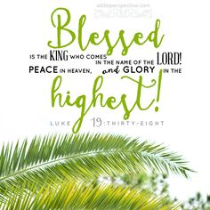 From Heavenly Lights Scripture Pictures, Scripture Cards, Bible Scriptures, Bible Quotes, Praise Quotes, Bible 2, Tree Quotes, Mormon Quotes, Biblical Verses