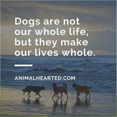 <3 #animalhearted