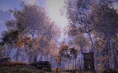 Ever-Autumn in The Rift #ESO
