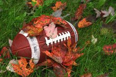 Image result for fall football
