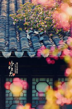 Wallpaper Nature Flowers, Scenery Wallpaper, Amazing Photography, Nature Photography, Art Asiatique, Teenage Girl Photography, Chinese Garden, Watercolor Wallpaper, Good Morning Flowers