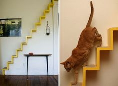cat perch + steps