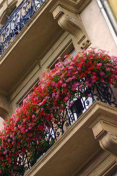 Balcony Flower Box, Small Balcony Garden, Window Box Flowers, Small Balcony Decor, Balcony Plants, Balcony Design, Flower Boxes, Garden Design, Apartment Balcony Decorating