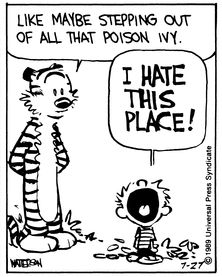 Calvin and Hobbes, (What could itch worse than bugs?) - Think about something else. | Something else?! Like what?? | Like maybe stepping out of all that poison ivy.