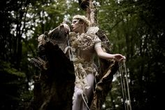 """The Patience of Trees"" from the ""Wonderland"" Series 