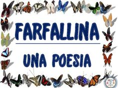 A bilingual Italian poem with English translation about a butterfly. Great for FLES classes!