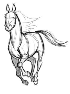 Image result for galloping horses drawings easy