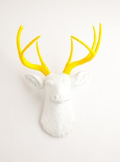 Faux Taxidermy  The Baron  White W/ Yellow door WhiteFauxTaxidermy, $94.99
