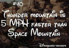 Disneyland Secrets #40.  I wonder if this is still true since they updated?