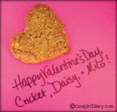 Horse Treats For Valentine's Day