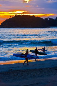 Surfers at sunrise, Manly Beach, Sydney
