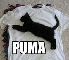 I found two funny takes on the Puma logo today. Here's the first one.