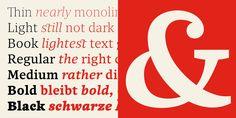 Quercus 10™ - Webfont & Desktop font « MyFonts