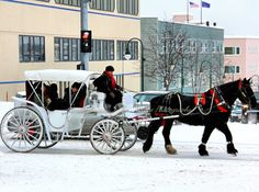 Carriages operate year round in front of the Hotel Captain Cook (939 W Fifth Ave.) and Glacier BrewHouse (737 W Fifth Ave.) from 7:00 until 10:30 on Friday and Saturday nights, weather permitting.