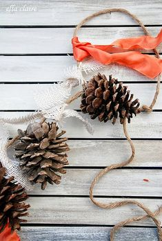 pinecone-crafts-garland.jpg 500×739 pixel