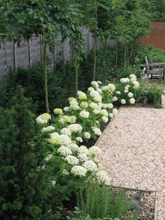 Best Small Yard Landscaping & Flower Garden Design Ideas - New ideas Country Cottage Garden, Cottage Garden Design, Flower Garden Design, Garden Landscape Design, White Gardens, Farm Gardens, Small Gardens, Outdoor Gardens, Hydrangea Landscaping