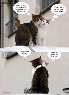 Humor y Amor animal, los mejores regalos no llegan envueltos en un bonito papel…